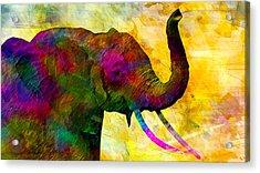 Elephant Acrylic Print by Elena Kosvincheva