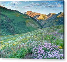 Wasatch Mountains Utah Acrylic Print