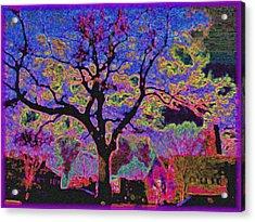 113z  Gothic  Blue Acrylic Print by Ed Immar