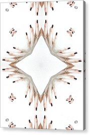Unique Design Pattern Acrylic Print by Amy Cicconi
