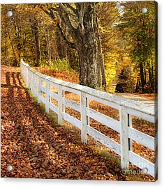 Autumn Series Acrylic Print