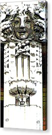 Embellishment Series Acrylic Print by Ginger Geftakys