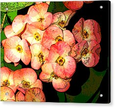 Nature Series Acrylic Print by Ginger Geftakys