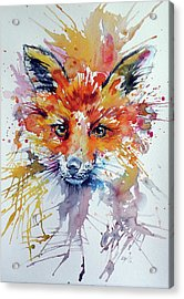 Red Fox Acrylic Print by Kovacs Anna Brigitta