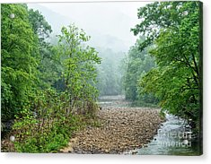 Acrylic Print featuring the photograph Williams River Summer Mist by Thomas R Fletcher