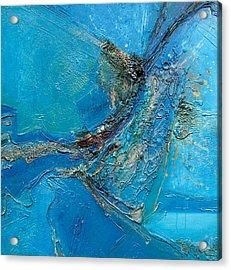 132 Acrylic Print by Devakrishna Marco Giollo