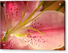Flower Series Acrylic Print