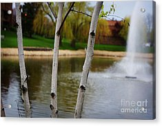 Spring Landscape Acrylic Print by Celestial Images