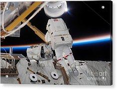 Astronaut Participates Acrylic Print by Stocktrek Images