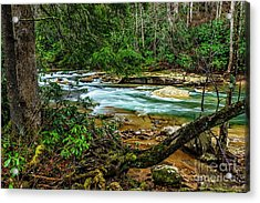 Acrylic Print featuring the photograph Back Fork Of Elk River by Thomas R Fletcher