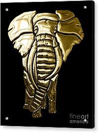 Elephant Collection Acrylic Print