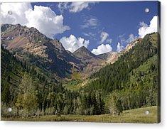 Mountain Meadow Acrylic Print by Mark Smith