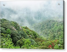 Mountain Scenery In The Mist Acrylic Print