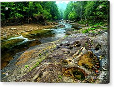Acrylic Print featuring the photograph Williams River Summer by Thomas R Fletcher