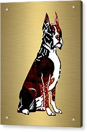 Boxer Collection Acrylic Print by Marvin Blaine