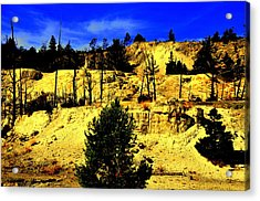 Yellowstone Park Acrylic Print by Aron Chervin