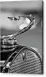1930 Cadillac Roadster Hood Ornament 2 Acrylic Print by Jill Reger