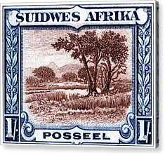 Acrylic Print featuring the painting 1931 South West African Landscape Stamp by Historic Image
