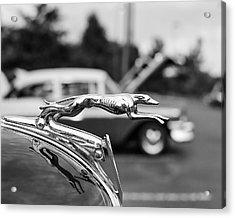 1934 Ford V8 Hood Ornament Acrylic Print
