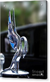 1934 Packard Eight - Hood Ornament Acrylic Print