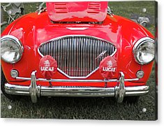 1956 Austin Healey 100 M Acrylic Print by Jack R Perry