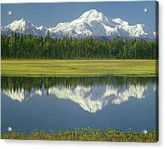 1m1325 Mt. Hunter And Mt. Denali Acrylic Print