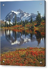 1m4208 Mt. Shuksan And Picture Lake Acrylic Print