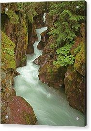 1m8115 Avalanche Gorge Mt Acrylic Print