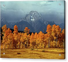 1m9235 Mt. Moran In Autumn Acrylic Print