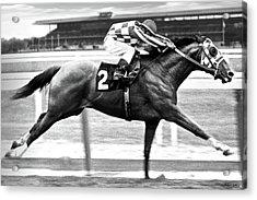 1973 Belmont Stakes, Secretariat, Back Stretch, 1 12 Miles, 2 Min 24 Sec Acrylic Print