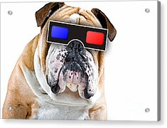 3d Dog Collection Acrylic Print by Marvin Blaine