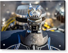 Acrylic Print featuring the photograph 51 Ford F-1 Rat Rod - Ehhs Car Show by Michael Sussman