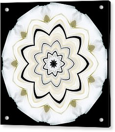 9 Petaled Designs Acrylic Print by Baha'i Writings As Art