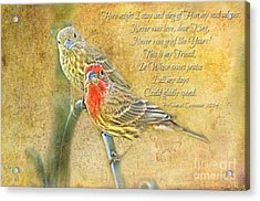A Pair Of Housefinches With Verse Part 2 - Digital Paint Acrylic Print by Debbie Portwood