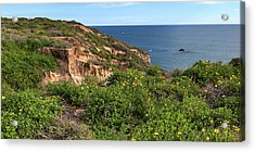 Acrylic Print featuring the photograph Above The Pacific by Cliff Wassmann