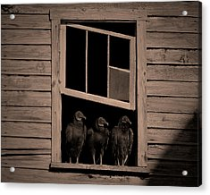 Almost Paneless Acrylic Print by Robert Geary