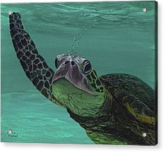 Acrylic Print featuring the painting Aloha From Maui by Darice Machel McGuire