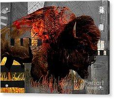 American Buffalo Collection Acrylic Print by Marvin Blaine
