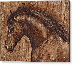 Ancient Glory Acrylic Print by Paula Collewijn -  The Art of Horses