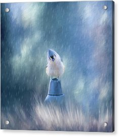 April Showers Acrylic Print