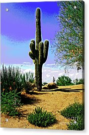 Arizona Cactus Acrylic Print