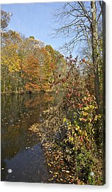 Autumn Colors On The Canal Acrylic Print