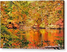 Autumn Reflections Acrylic Print by Kristin Elmquist
