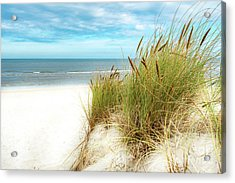 Acrylic Print featuring the photograph Beach Grass by Hannes Cmarits
