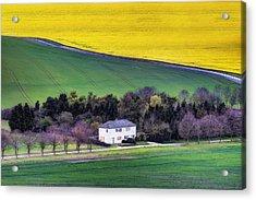 Berkshire - England Acrylic Print by Joana Kruse