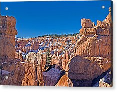 Bryce Canyon N.p. Acrylic Print by Larry Gohl