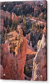 Acrylic Print featuring the photograph Bryce Canyon Sunrise by Stephen  Vecchiotti