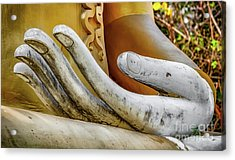 Acrylic Print featuring the photograph Buddha's Hand by Adrian Evans
