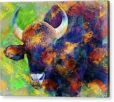 Bull Acrylic Print by Elena Kosvincheva