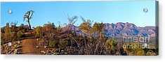 Acrylic Print featuring the photograph Bunyeroo Valley by Bill  Robinson